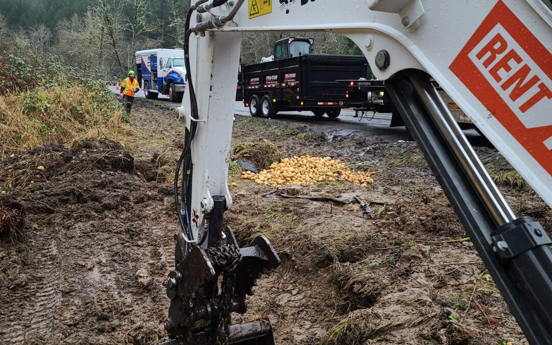 2020-01-02: Digging Potatoes Cargo Recovery